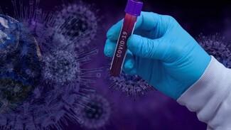 За сутки в Самарской области заболели коронавирусом 285 человек, 9 пациентов погибли