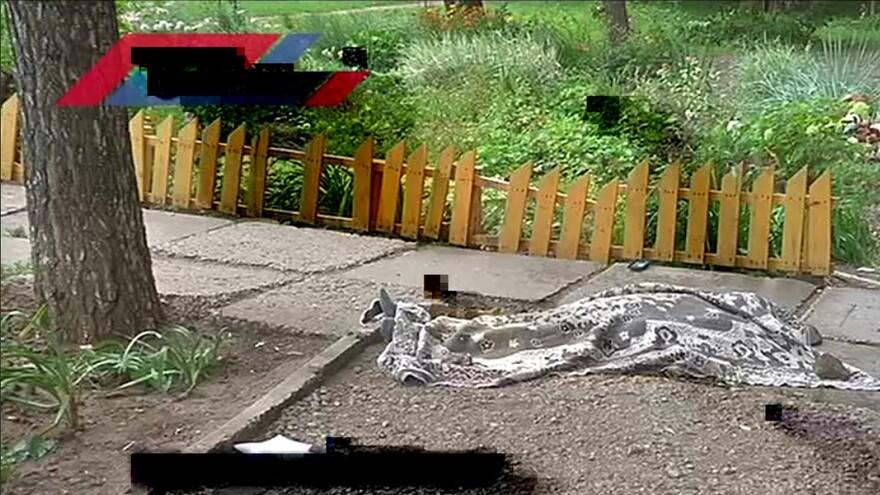 В Тольятти женщина сбросилась с 9 этажа