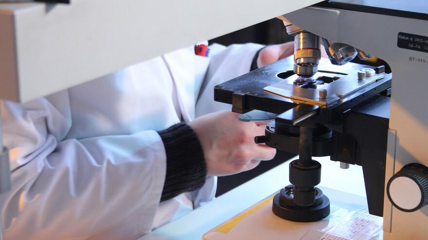 Новый коронавирус научился обходить антитела