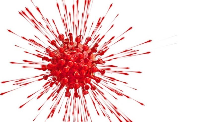 В Самарской области от коронавируса за сутки умерли шесть человек
