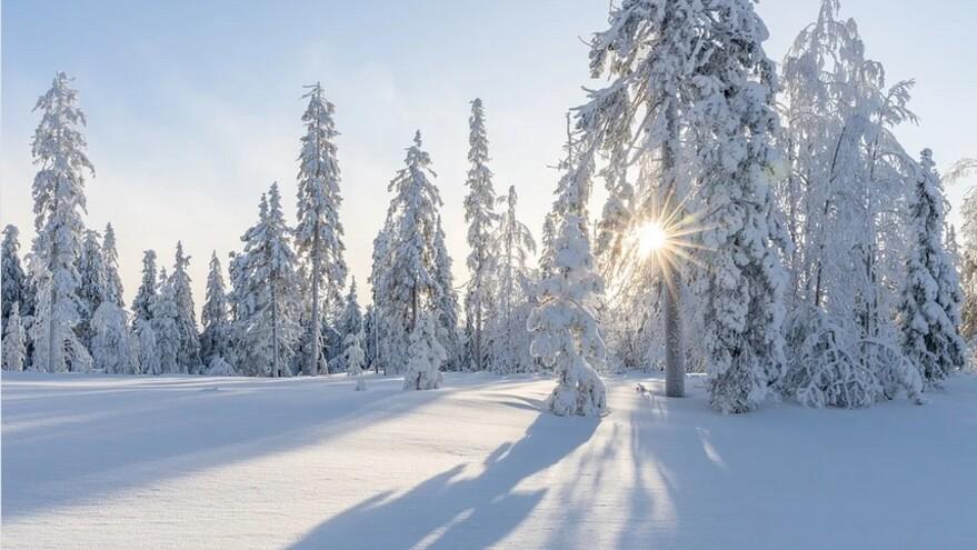 В Самарской области снега будет мало: озвучен прогноз погоды на декабрь