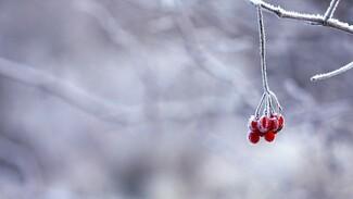 В ночь на Рождество в Самарской области похолодает до -17°C