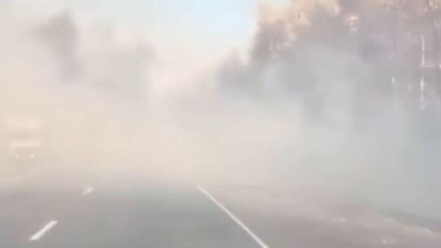 В Самарской области горит лес