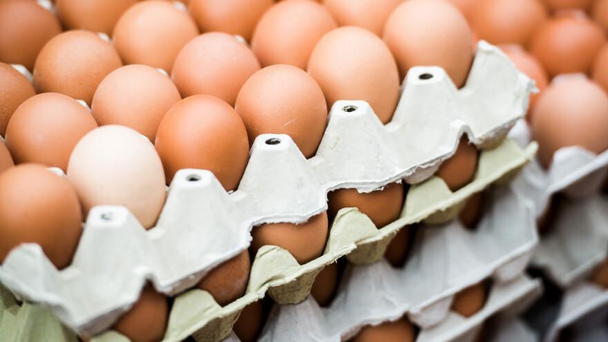 В Тольятти задержали 303 тысячи «нелегальных» яиц