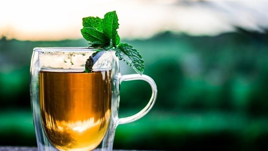 Как чай с мятой помогает при головной боли