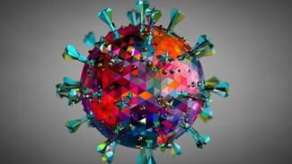 В Самарской области число зараженных коронавирусом достигло 36 586 человек
