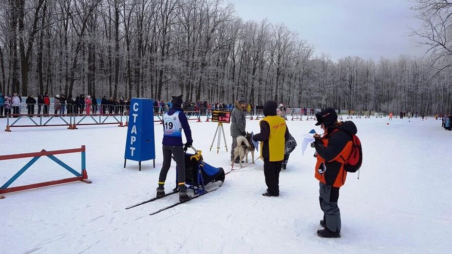В Самарской губернии официально открывается зимний спортивный сезон