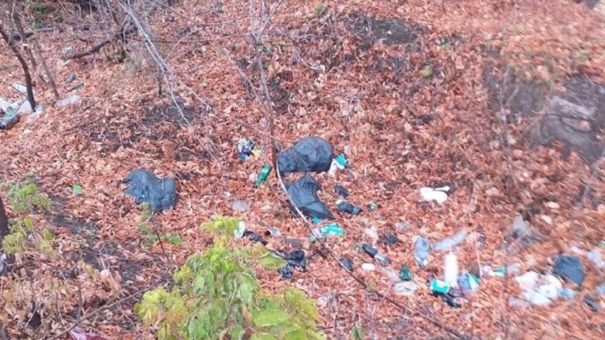 В Сызрани обнаружена свалка бутылок