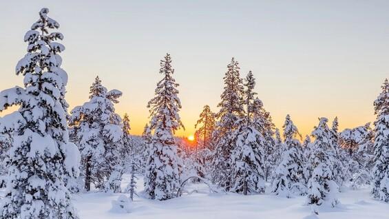 Самарскую область ожидают морозы до -33 градусов