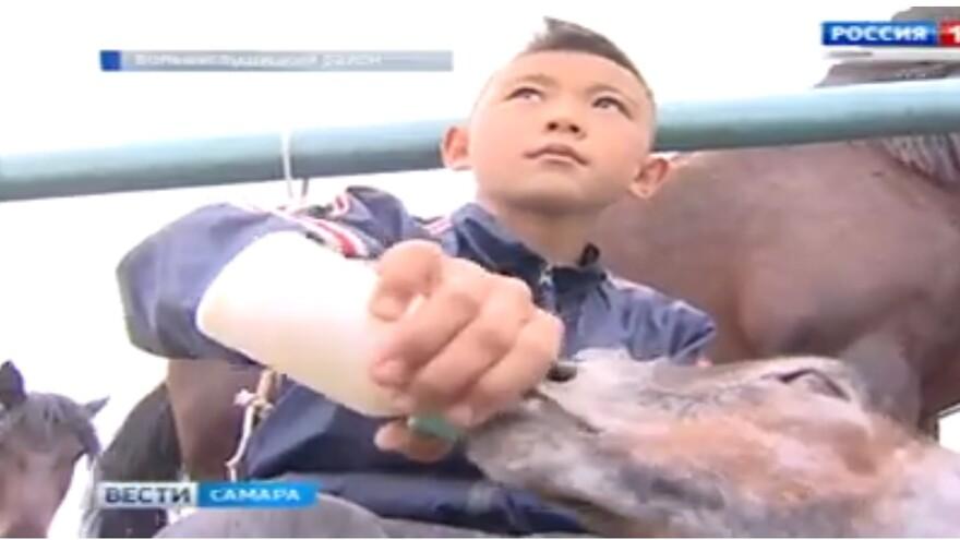 В единственном хозяйстве Самарской области возродили производство настоящего кумыса