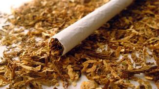 Самарских курильщиков начнут приобщать к новому виду сигарет