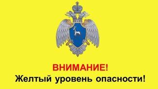 В Самарской области объявлен желтый уровень опасности из-за сильного мороза