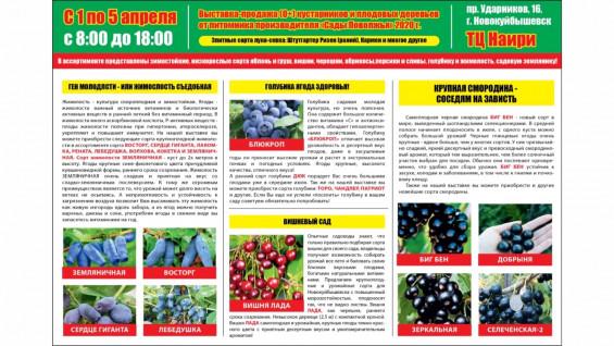 В Самарской области началась подготовка к сезону посадки плодовых деревьев и кустарников