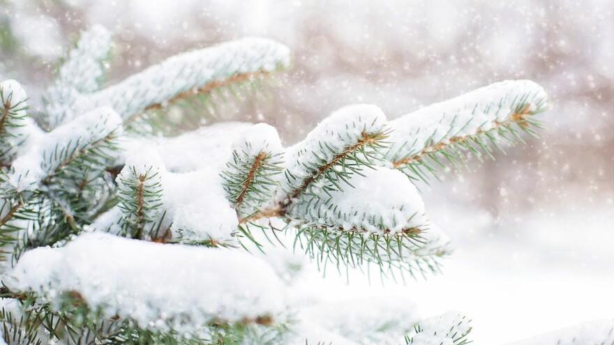 Прокопьев день 5 декабря: что можно и нельзя делать