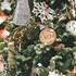 Праздники закончились: в МЧС посоветовали выбросить новогодние елки