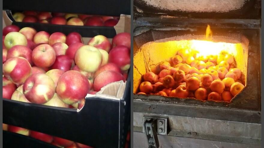 В Самаре сожгли полтонны овощей и фруктов