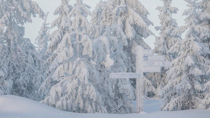 День Николая Зимнего: что можно и чего нельзя делать 19 декабря