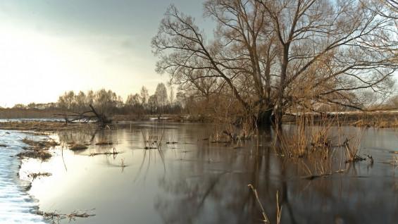 В Самарской области ожидается раннее половодье