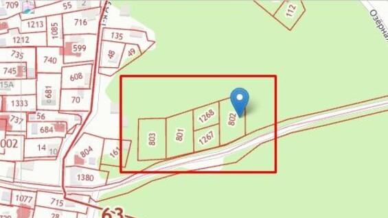 Самарские власти прокомментировали информацию по поводу вырубки деревьев на Сорокиных хуторах