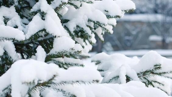 На Самарскую область идут снегопады и морозы, объявлен жёлтый уровень опасности