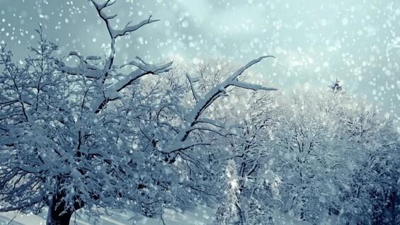 Южный циклон принес в Самарскую область снегопады