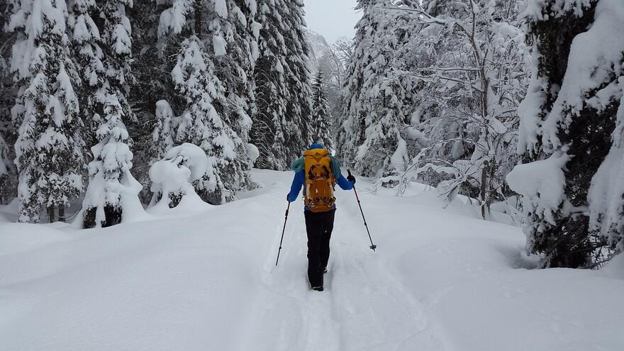 Прогулки на морозе: польза и вред