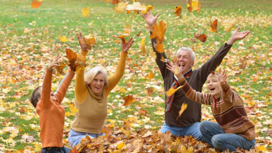 28 октября  - День бабушек и дедушек в России