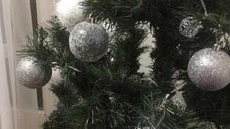 Как не превратить праздники в рутину: советы экспертов