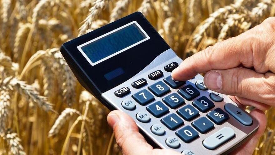 Сельхозпроизводители Самарской области смогут не возвращать субсидии за невыращенный урожай