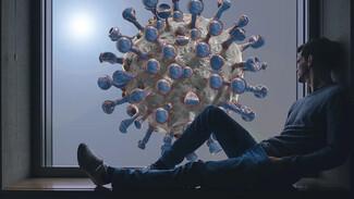 Где в Самарской области ещё 287 человек заболели коронавирусом