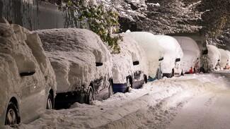 В Самарской области почти 12 тыс. тонн снега вывезли на полигоны с 1 января