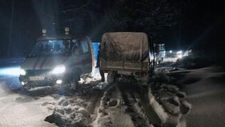 В Жигулёвском заповеднике ночью пропал турист