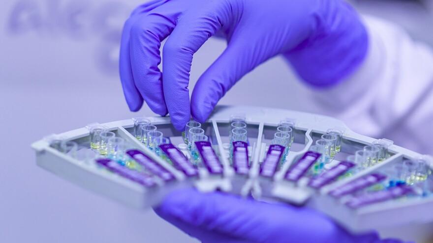 Где в Самарской области еще 281 человек заболел COVID-19