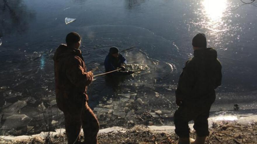 В Самарской области утонул рыбак