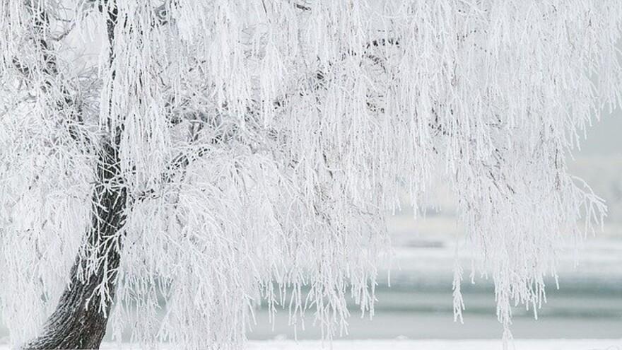 Каким будет январь в Самарской области: прогноз синоптиков