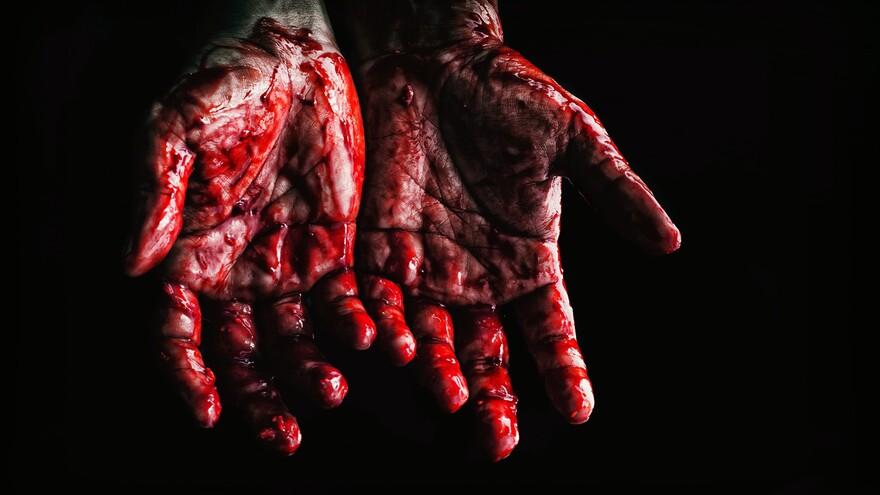 В Самарской области мужчина зверски расправился с другом и сожительницей