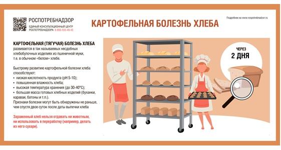 Будьте осторожны! Роспотребнадзор предупредил самарцев о том, что хлеб может быть зараженным