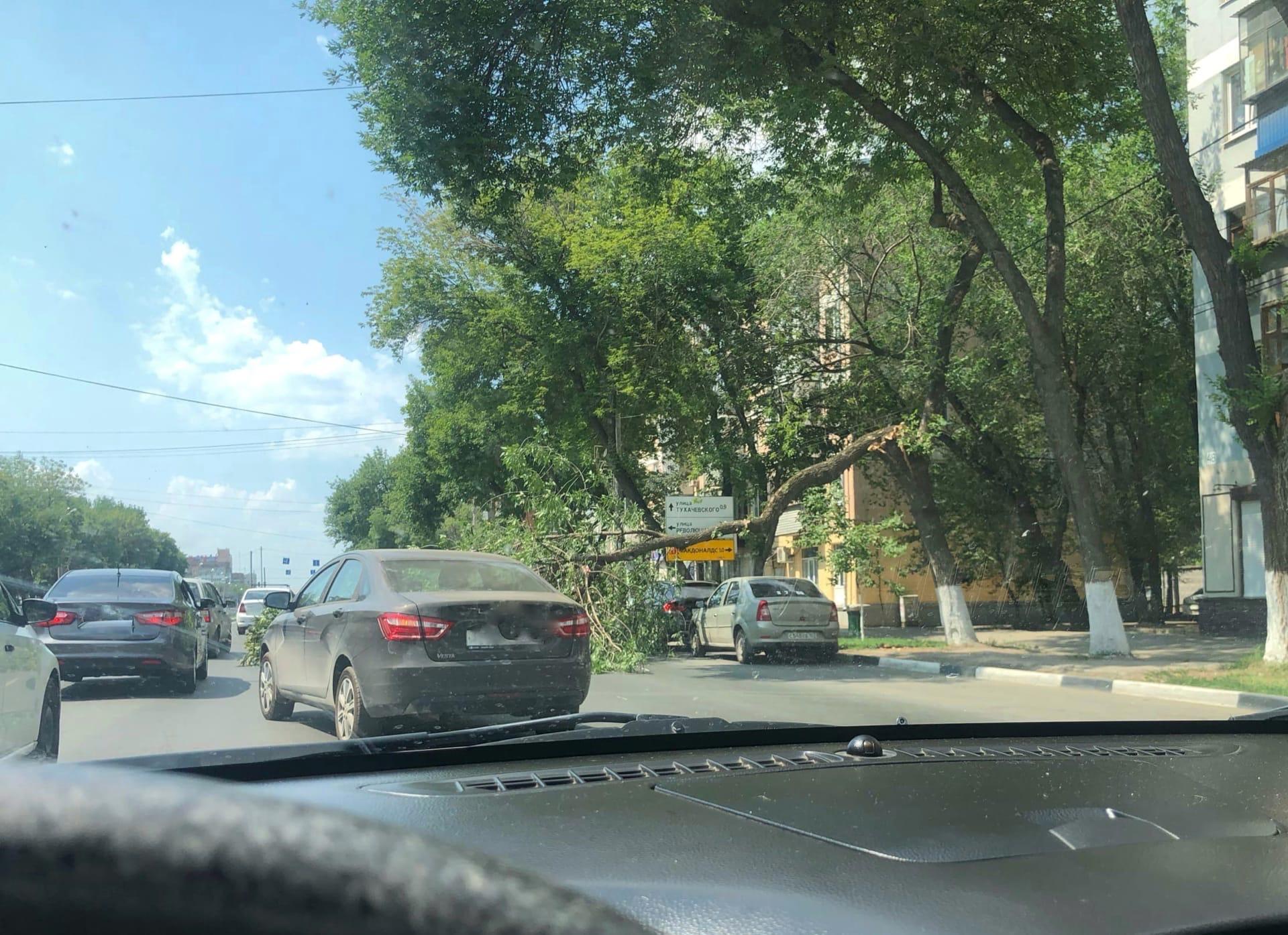 В Самаре и Тольятти из-за жары падают деревья