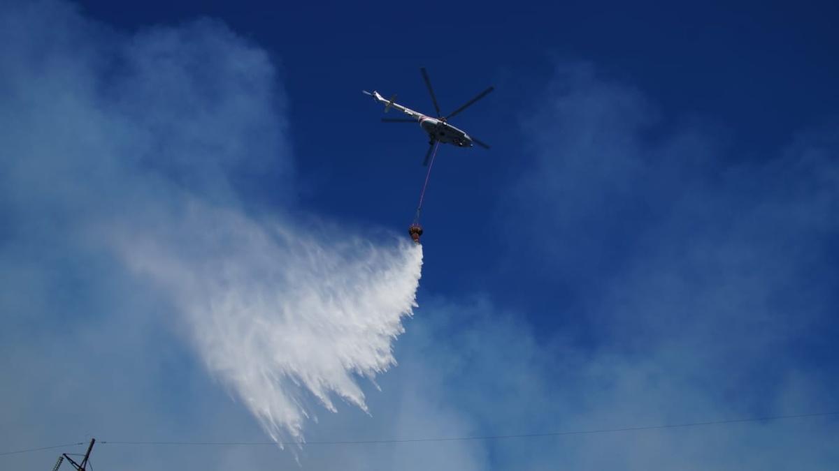 В Самарской области полностью потушили большой лесной пожар в Тольятти