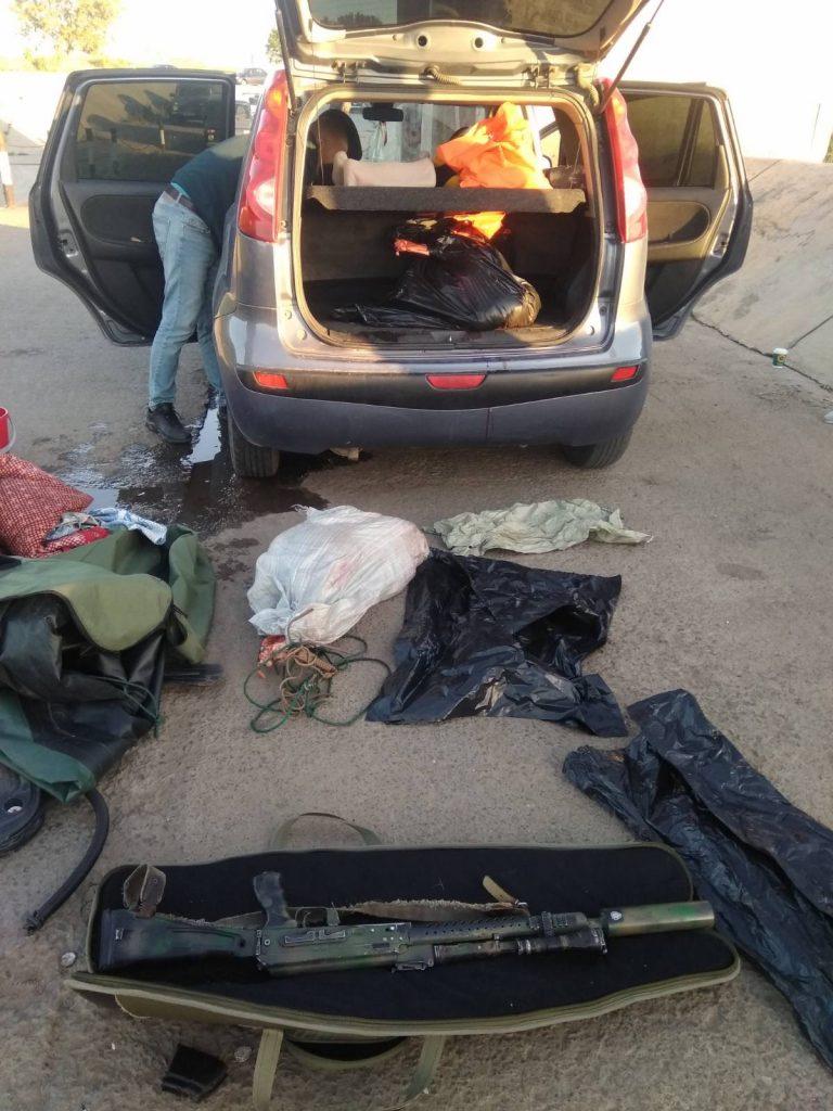 Убитый пятнистый олень в Самарской области оценен в 300 тысяч рублей