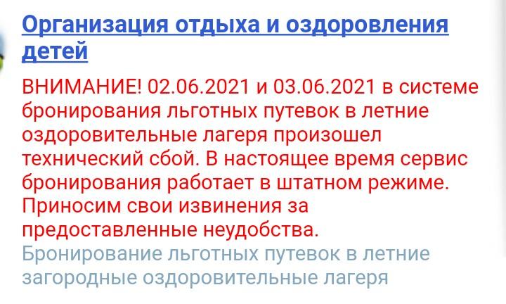 В Самарской области система бронирования льготных путёвок в детские лагеря дала сбой