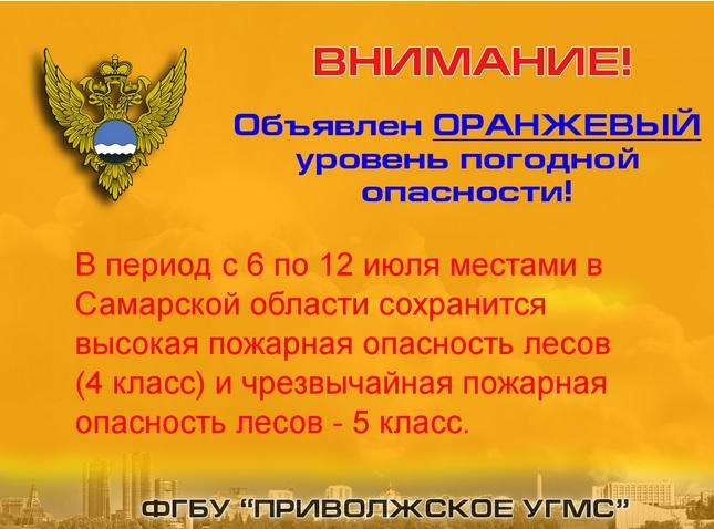 В Самарской области объявлена чрезвычайная пожароопасность лесов