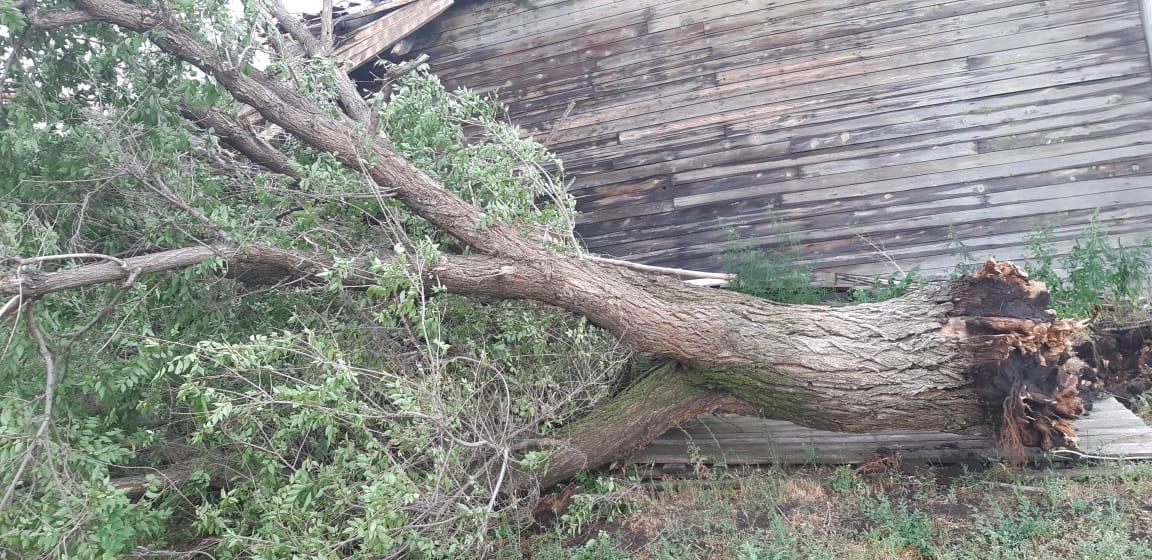 В Хворостянском районе Самарской области ураганом снесло крышу детского сада