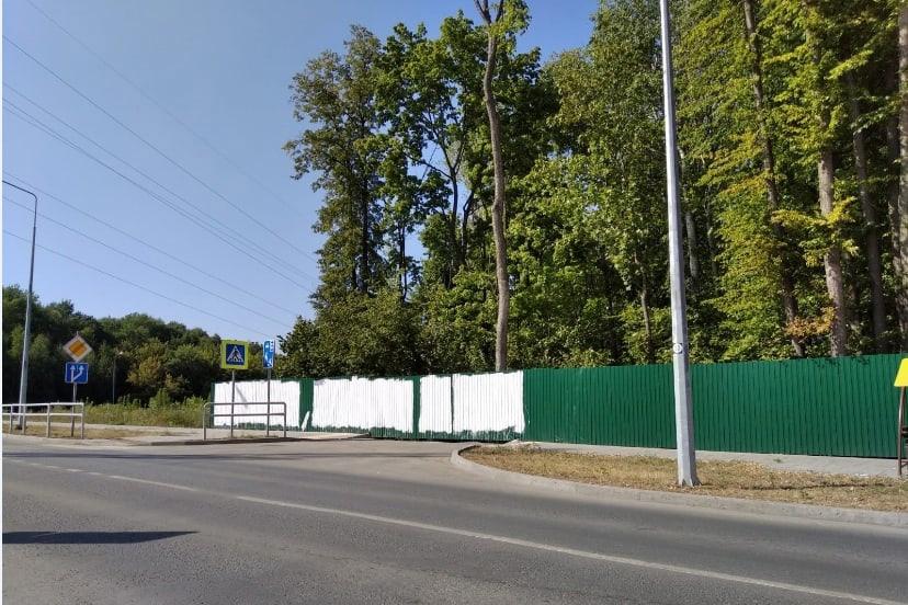 В мэрии Самары прокомментировали призыв к Бузовой спасти лес в Красноглинском районе