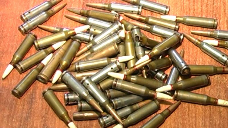 В Самарской области полиция изъяла из незаконного оборота ружья и боеприпасы