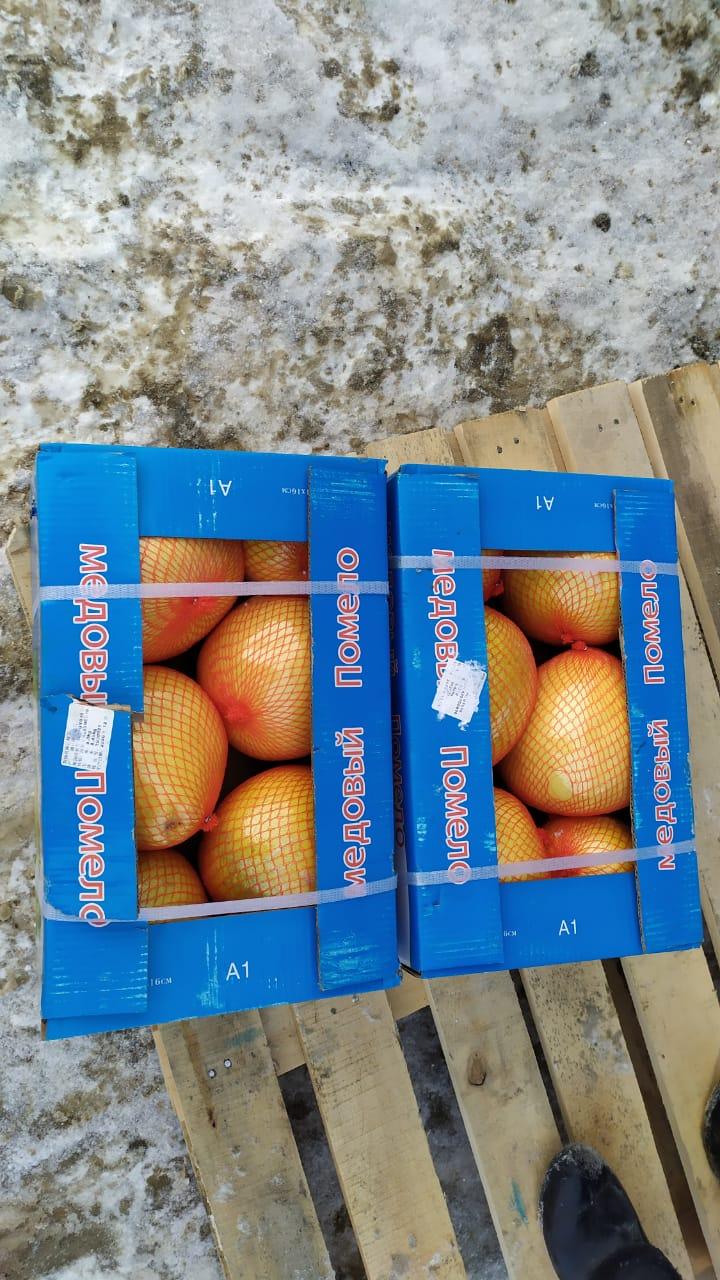Самара вернула в Казахстан тонны мандаринов и помело