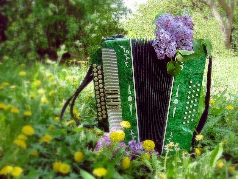 день музыки открытки баян если человек написал